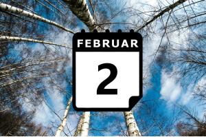 Urlaub im Februar - Vorschaubild
