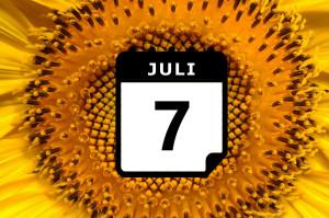 Urlaub im Juli - Vorschaubild