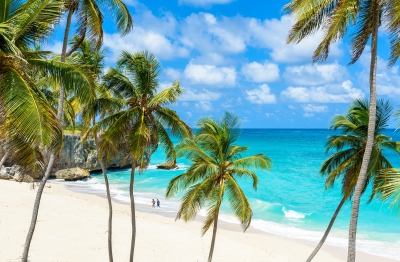Strand der Bottom Bay auf Barbados (Simon Dannhauer / stock.adobe.com)  lizensiertes Stockfoto