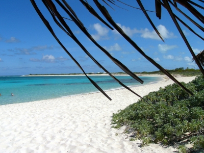 Loblolly Beach, Anegada, BVI (Kathleen Tyler Conklin)  CC BY